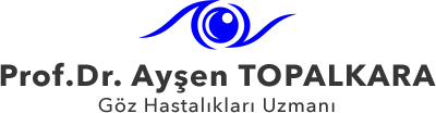 aysen-topalkara-buyuk-logo